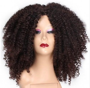 Afro Kinky Curly Synthetic Heat Resistant African Fluffy Hairstyle Wig